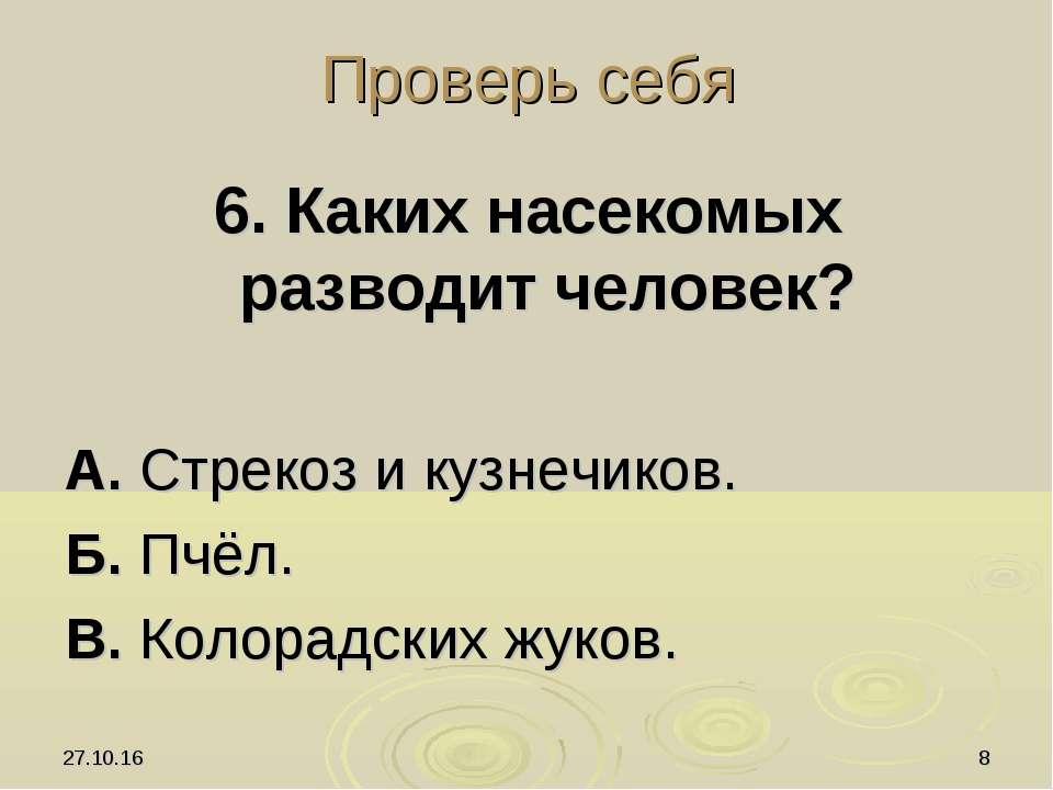 * * Проверь себя 6. Каких насекомых разводит человек? А. Стрекоз и кузнечиков...