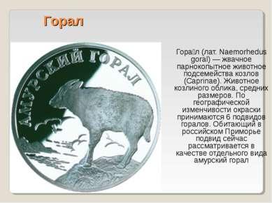 Горал Гора л (лат. Naemorhedus goral) — жвачное парнокопытное животное подсем...