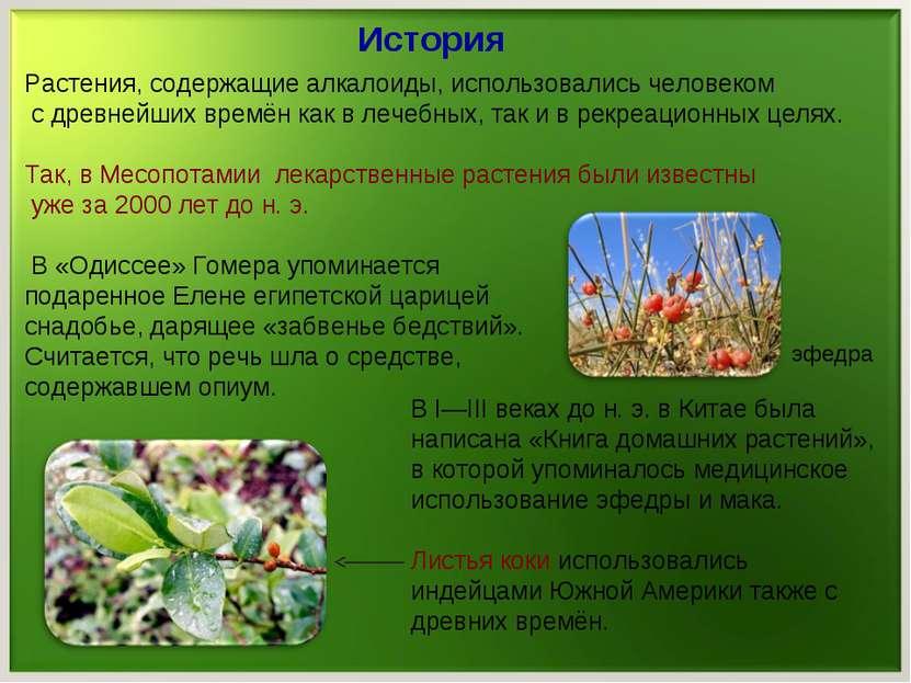 История Растения, содержащие алкалоиды, использовались человеком с древнейших...