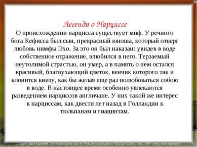 Легенда о Нарциссе О происхождении нарцисса существует миф. У речного бога Ке...