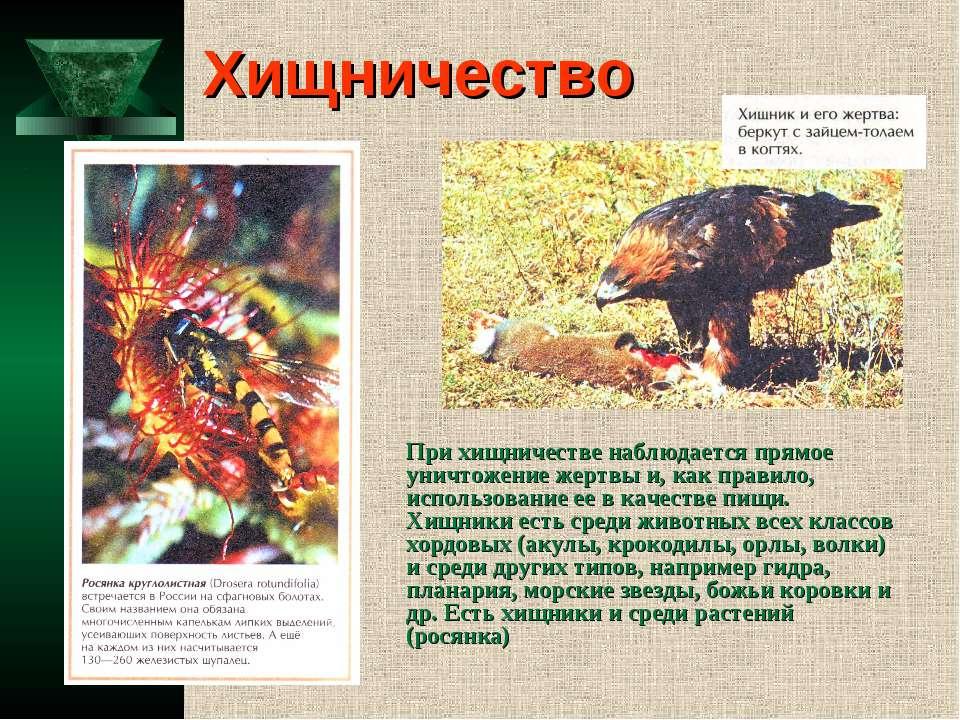 Хищничество При хищничестве наблюдается прямое уничтожение жертвы и, как прав...