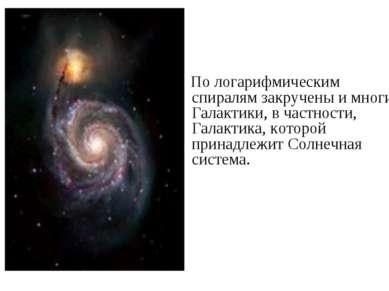 По логарифмическим спиралям закручены и многие Галактики, в частности, Галакт...