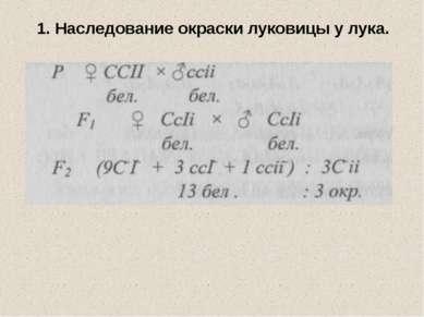 1. Наследование окраски луковицы у лука.