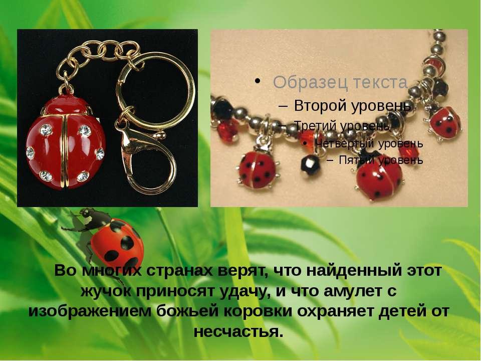 Во многих странах верят, что найденный этот жучок приносят удачу, и что амуле...