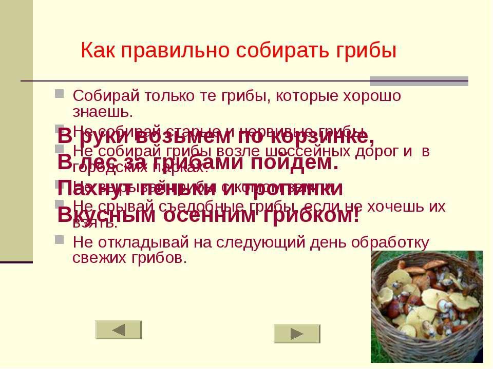 Как правильно собирать грибы Собирай только те грибы, которые хорошо знаешь. ...