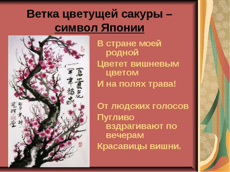 Ветка цветущей сакуры – символ Японии В стране моей родной Цветет вишневым цв...
