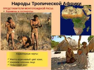 Народы Тропической Африки ПРЕДСТАВИТЕЛИ МОНГОЛОИДНОЙ РАСЫ: Бушмены и готтенто...