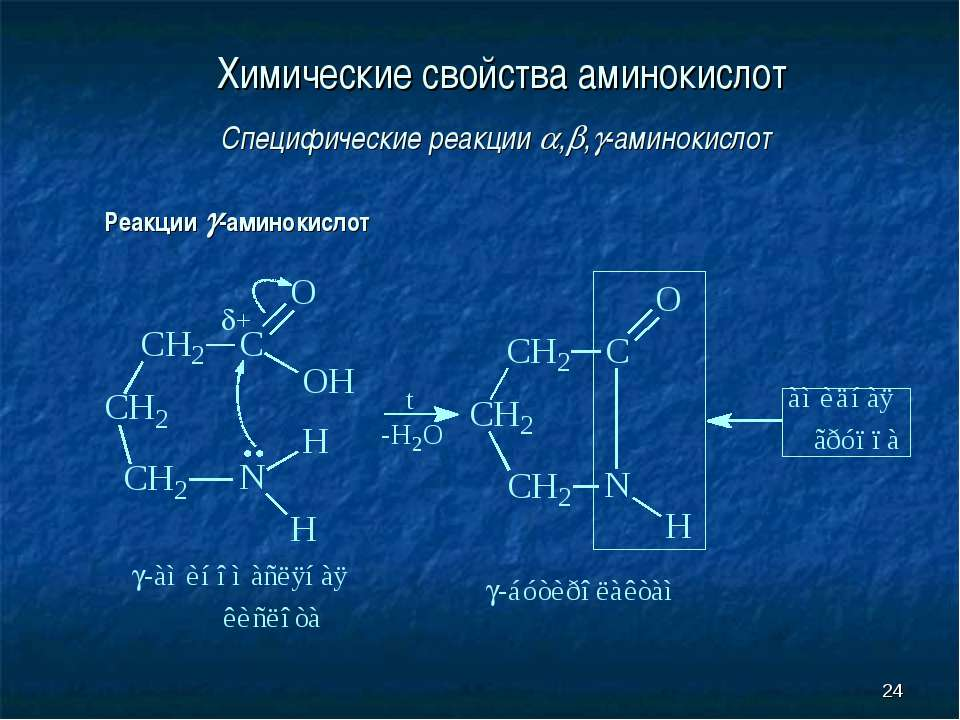 * Химические свойства аминокислот Специфические реакции , , -аминокислот Реак...