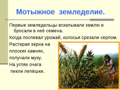 Первые земледельцы вскапывали землю и бросали в неё семена. Когда поспевал ур...