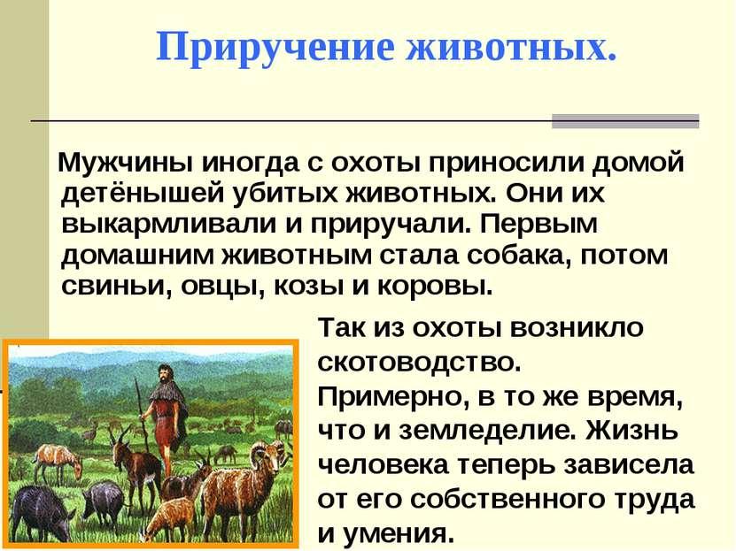 Приручение животных. Мужчины иногда с охоты приносили домой детёнышей убитых ...