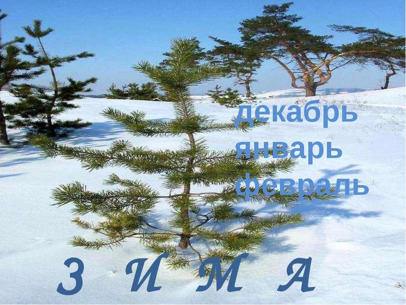 З И М А декабрь январь февраль