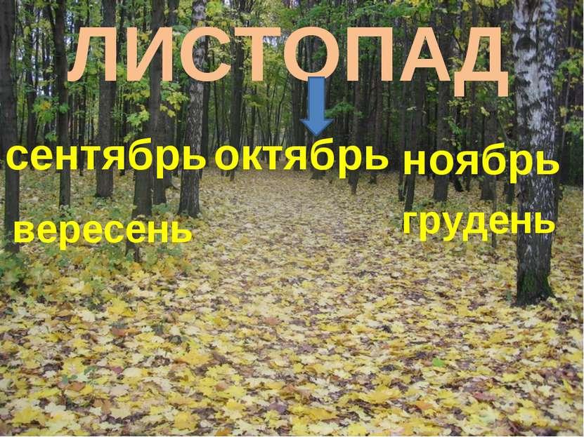 ЛИСТОПАД сентябрь октябрь ноябрь вересень грудень