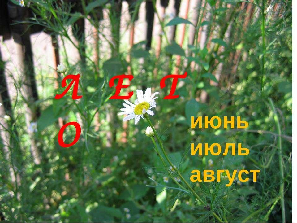 Л Е Т О июнь июль август