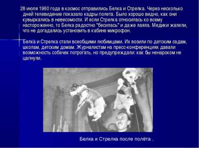 28 июля 1960 года в космос отправились Белка и Стрелка. Через несколько дней ...