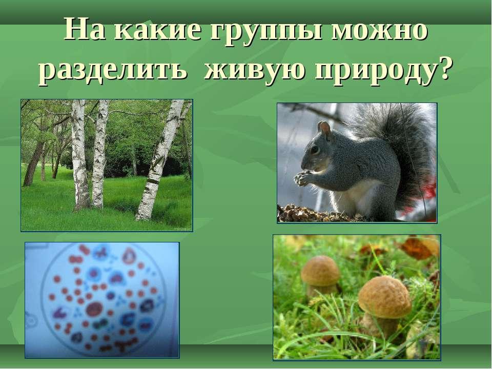 На какие группы можно разделить живую природу?