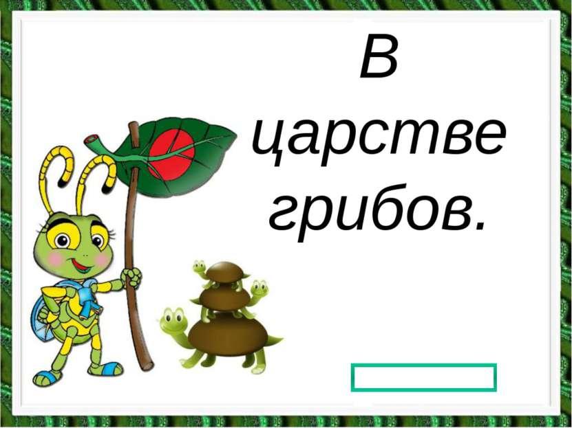 В царстве грибов. Prezentacii.com