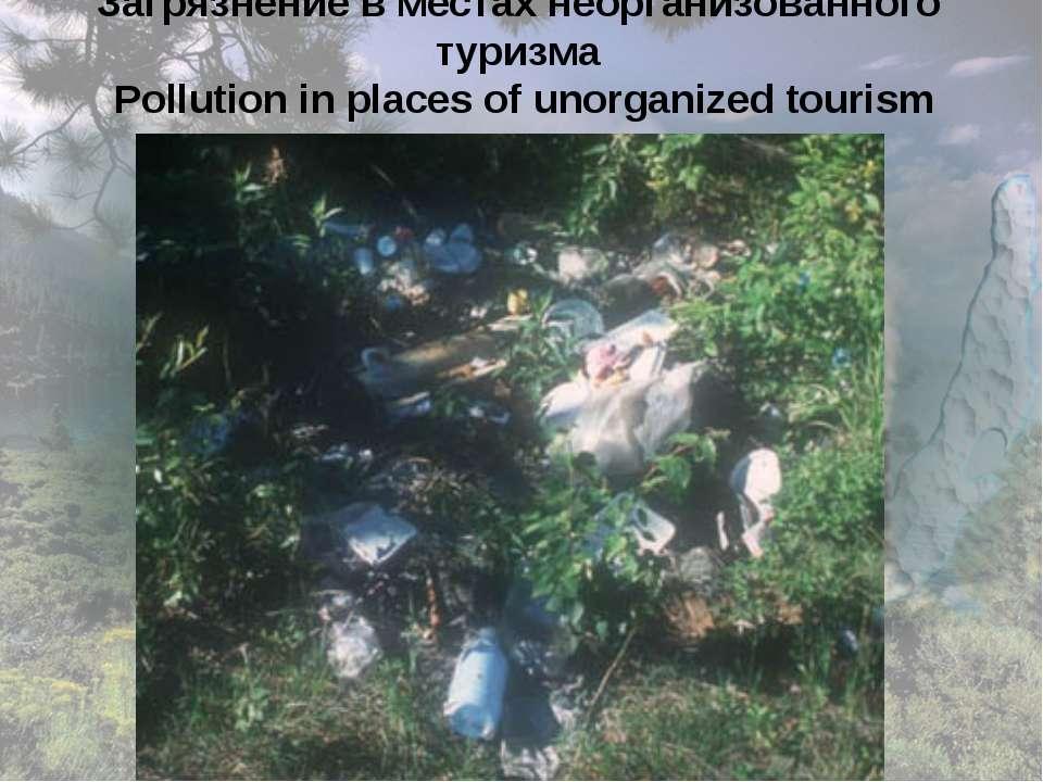 Загрязнение в местах неорганизованного туризма Pollution in places of unorgan...