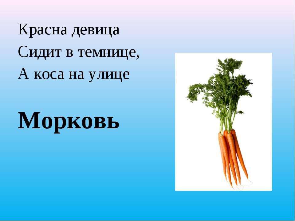 Красна девица Сидит в темнице, А коса на улице Морковь