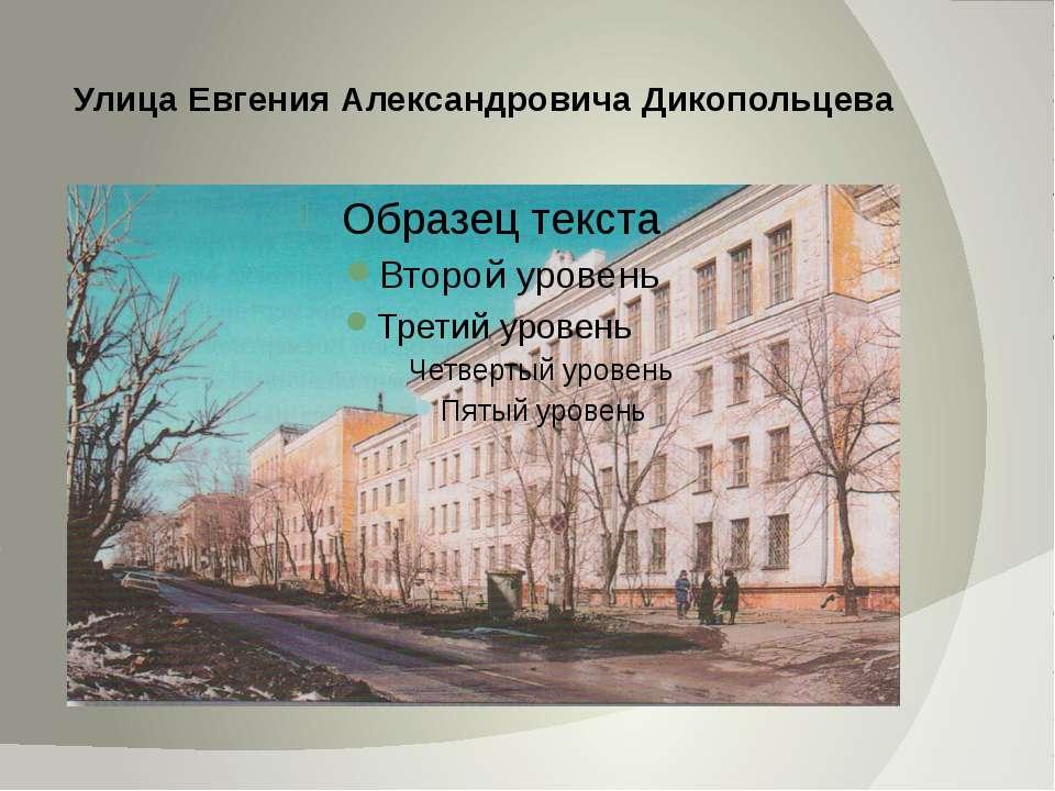 Улица Евгения Александровича Дикопольцева