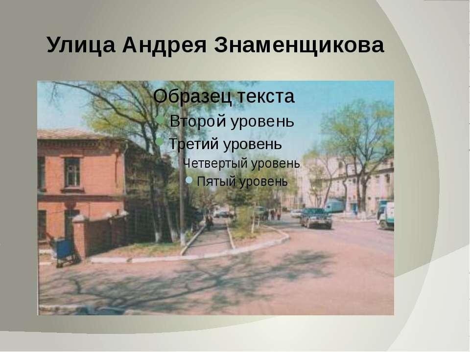 Улица Андрея Знаменщикова