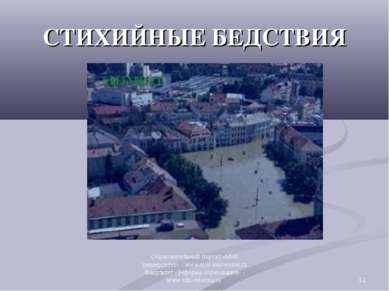 СТИХИЙНЫЕ БЕДСТВИЯ * Образовательный портал «Мой университет» - www.moi-unive...