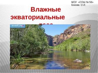 Влажные экваториальные леса МОУ «СОШ № 56» Бокова О И.