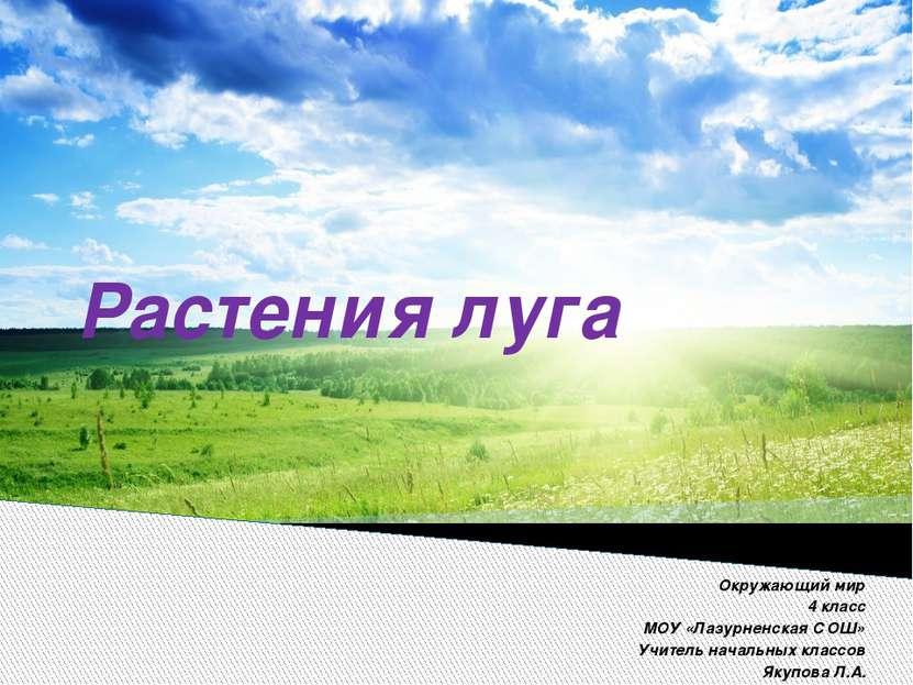 Растения луга Окружающий мир 4 класс МОУ «Лазурненская СОШ» Учитель начальных...