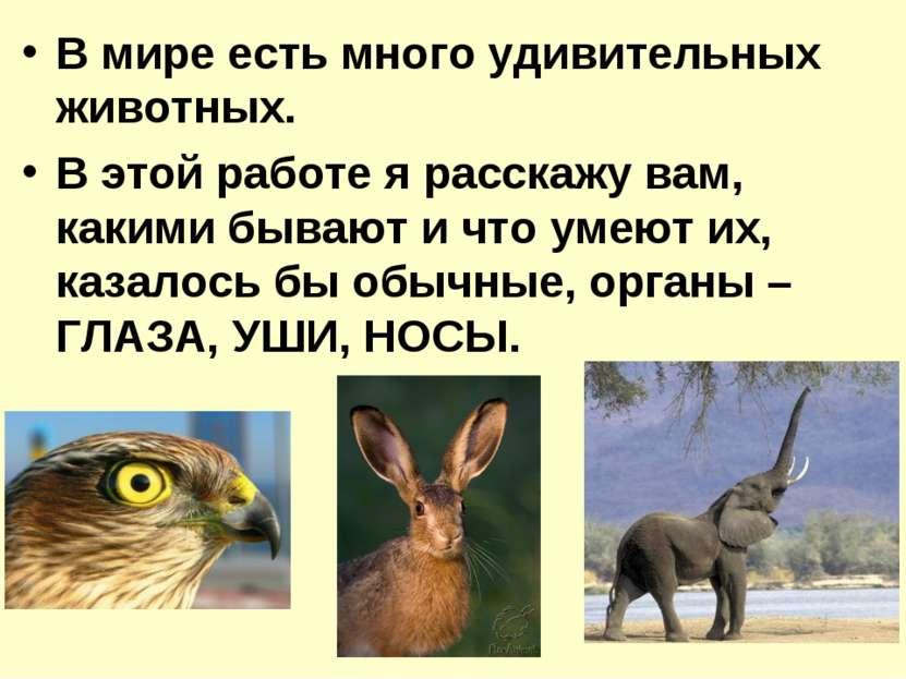 В мире есть много удивительных животных. В этой работе я расскажу вам, какими...