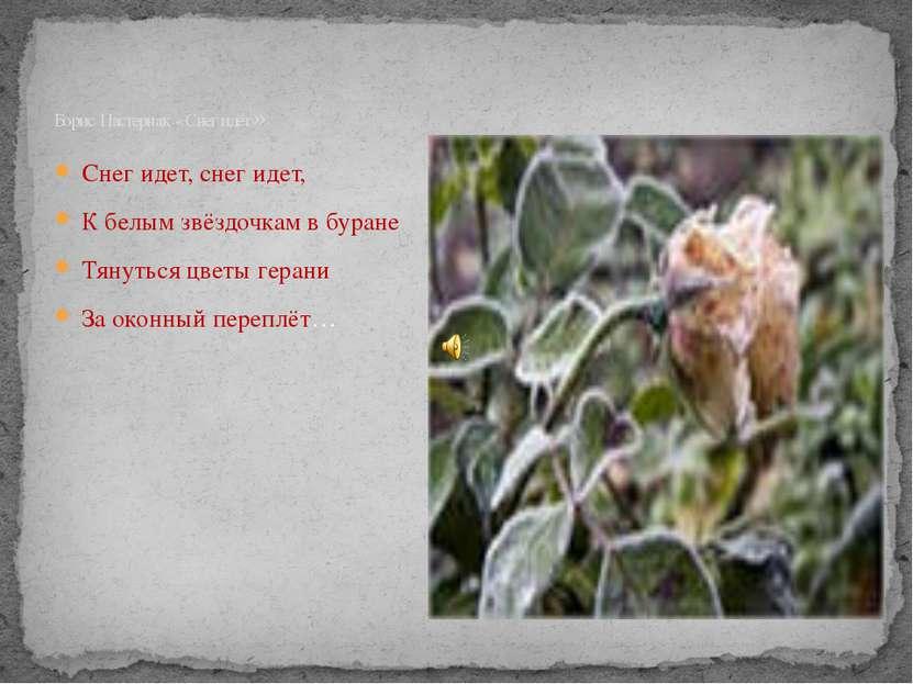 Снег идет, снег идет, К белым звёздочкам в буране Тянуться цветы герани За ок...