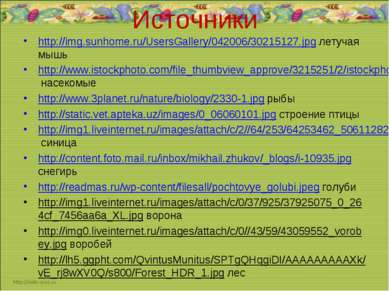 Источники http://img.sunhome.ru/UsersGallery/042006/30215127.jpg летучая мышь...