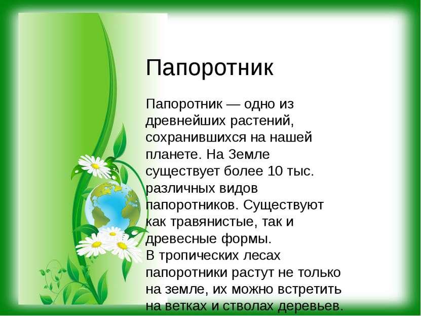 Папоротник — одно из древнейших растений, сохранившихся на нашей планете. На ...