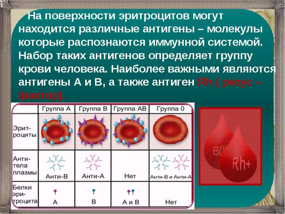 На поверхности эритроцитов могут находится различные антигены – молекулы кото...
