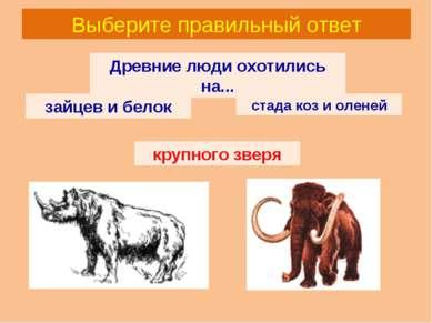 Выберите правильный ответ Древние люди охотились на... зайцев и белок стада к...
