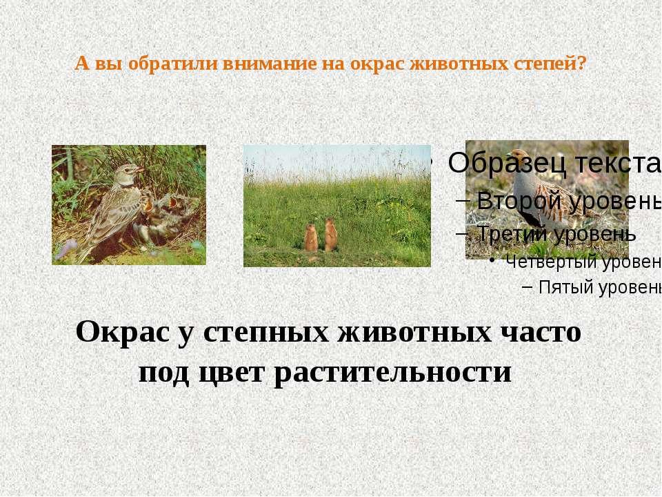 А вы обратили внимание на окрас животных степей? Окрас у степных животных час...