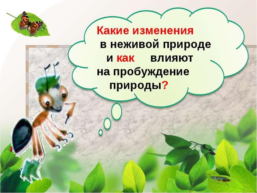 Какие изменения в неживой природе и как влияют на пробуждение природы?