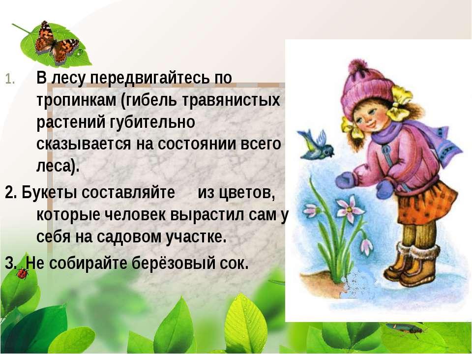 В лесу передвигайтесь по тропинкам (гибель травянистых растений губительно ск...