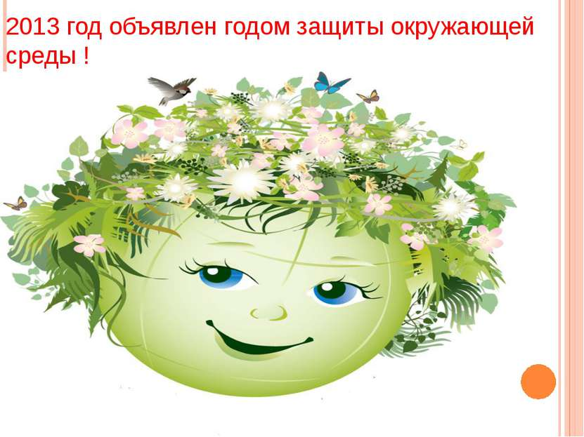2013 год объявлен годом защиты окружающей среды !