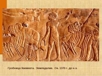 Гробница Хаемхета. Земледелие. Ок. 1370 г. до н.э.