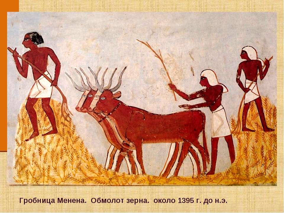 Гробница Менена. Обмолот зерна. около 1395 г. до н.э.