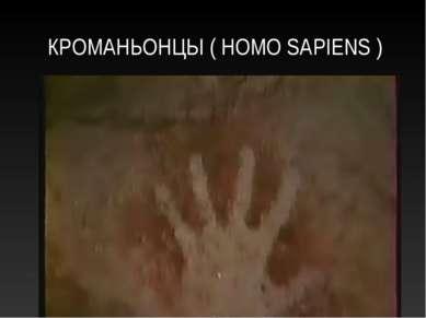 КРОМАНЬОНЦЫ ( HOMO SAPIENS )