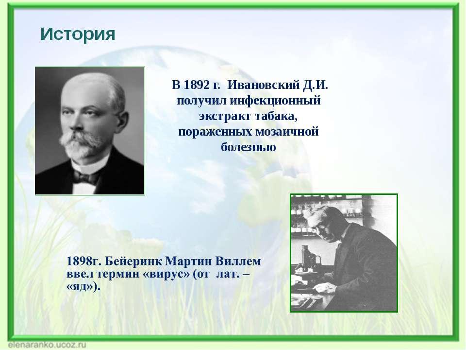 История В 1892 г. Ивановский Д.И. получил инфекционный экстракт табака, пораж...