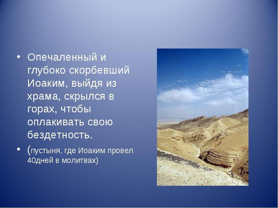 Опечаленный и глубоко скорбевший Иоаким, выйдя из храма, скрылся в горах, что...