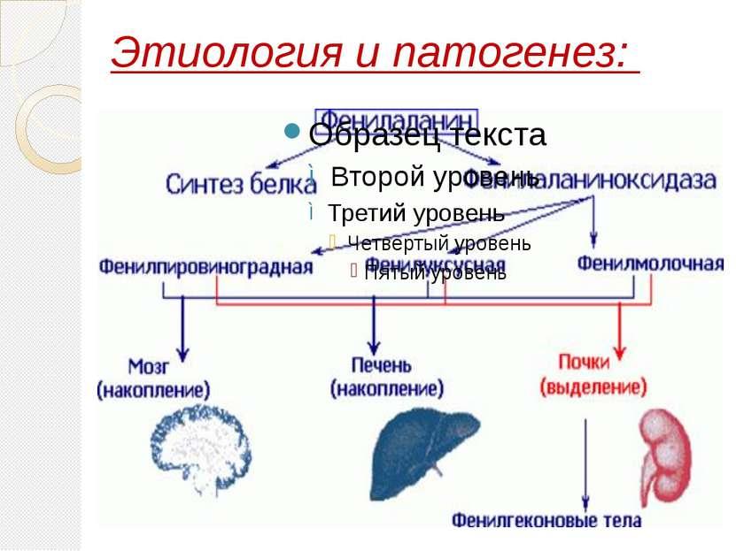Этиология и патогенез: