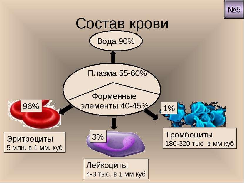 Состав крови Вода 90% Эритроциты 5 млн. в 1 мм. куб Лейкоциты 4-9 тыс. в 1 мм...