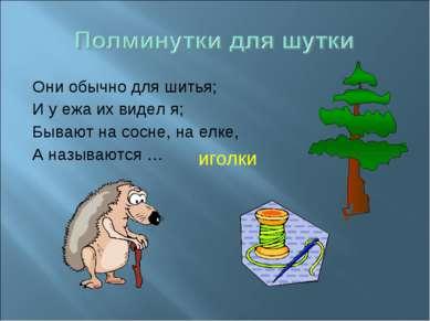 Они обычно для шитья; И у ежа их видел я; Бывают на сосне, на елке, А называю...