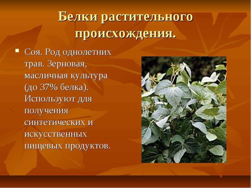 Белки растительного происхождения. Соя. Род однолетних трав. Зерновая, маслич...