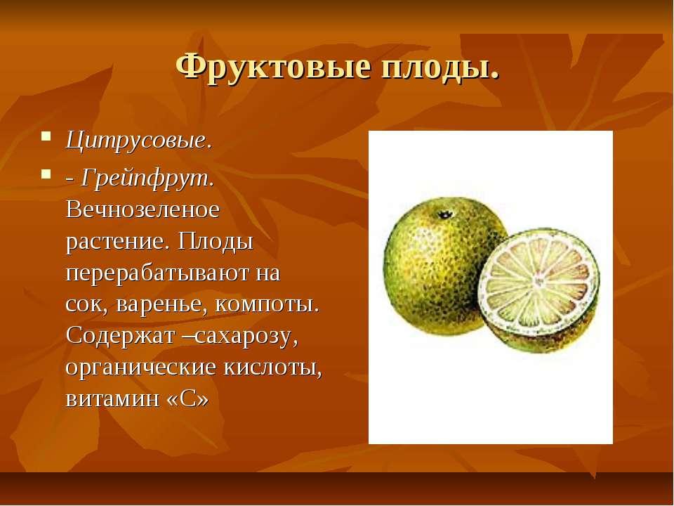 Фруктовые плоды. Цитрусовые. - Грейпфрут. Вечнозеленое растение. Плоды перера...