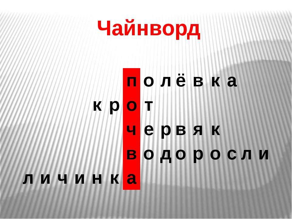 Чайнворд п о л ё в к а к р о т ч е р в я к в о д о р о с л и л и ч и н к а