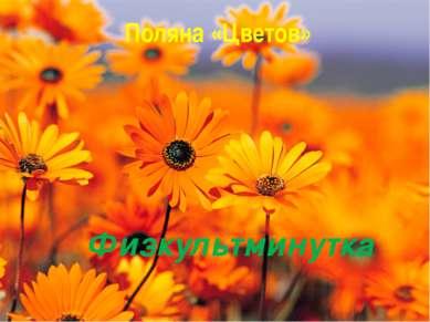 Поляна «Цветов» Физкультминутка