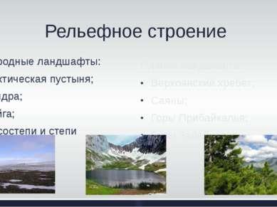 Природные ландшафты: Арктическая пустыня; Тундра; Тайга; Лесостепи и степи Ре...